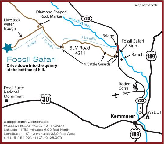 Fossil Safari At Warfield Fossil Quarries Inc